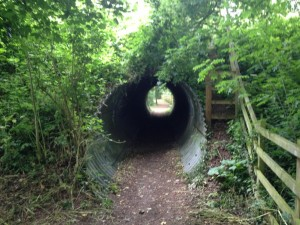 Colsterworth culvert_reduced size